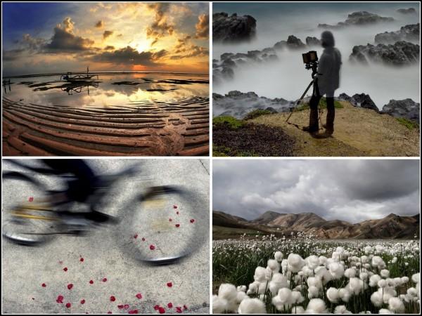 ТОР-фото за 10-16 января от National Geographic
