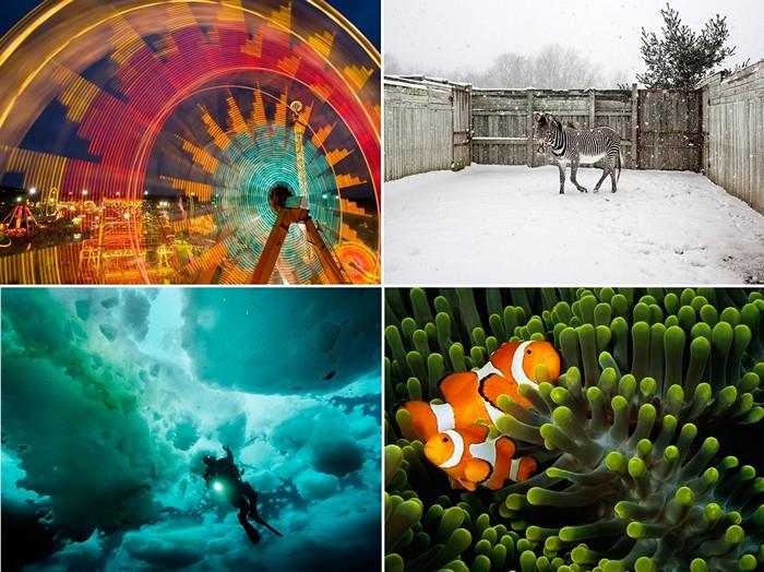 ТОР-фото за 10-16 октября по версии National Geographic
