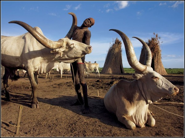 Dinka Cattle Camp, Sudan