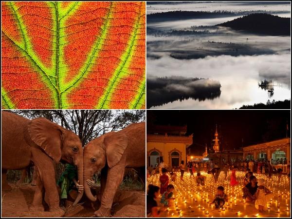 Лучшие фото за 15-21 августа от National Geographic