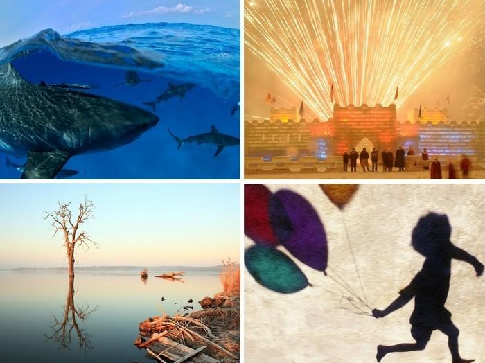 Лучшие фото за 19-25 сентября от National Geographic