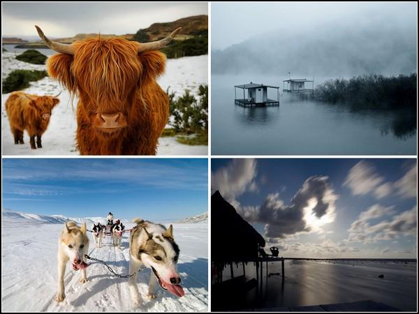 ТОР-фото за 20-26 июня от National Geographic