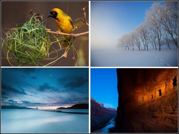 ТОР-фото последней недели ушедшего года от National Geographic