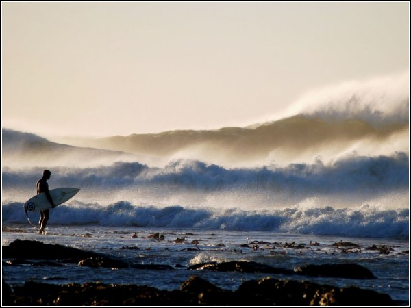 Surfer, South Africa