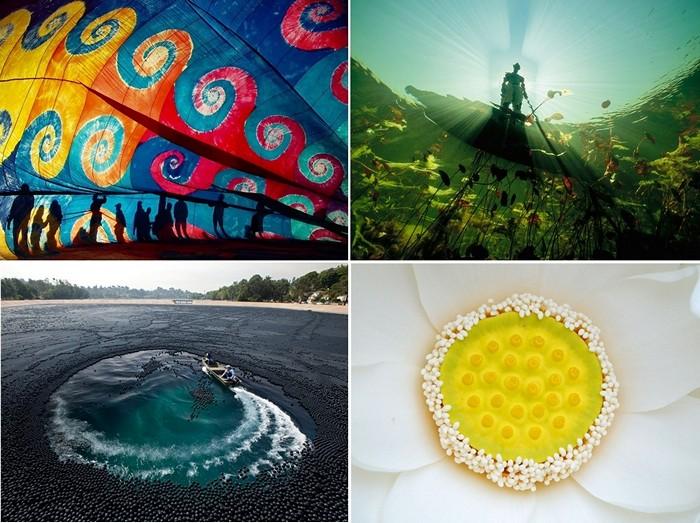 Лучшие фотографии за 03-09 октября от National Geographic