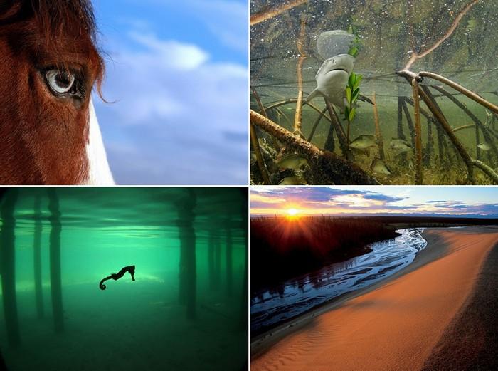 Лучшие фото за 24-30 октября от National Geographic