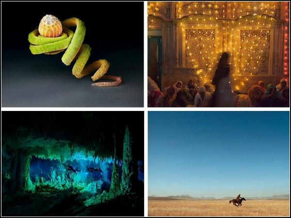Лучшие фотографии 18-24 октября от National Geografic