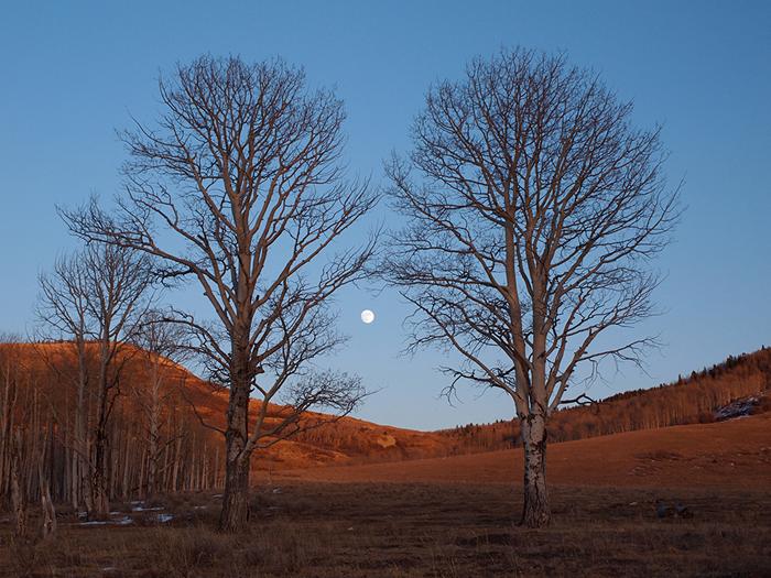 Moonrise, Colorado