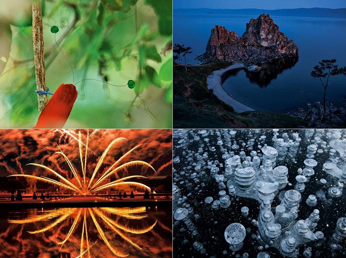 ТОР-фото за 11-17 марта от National Geographic