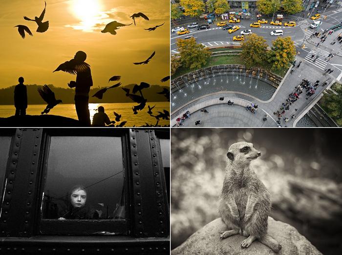 ТОР-фото за 28 января - 03 февраля от National Geographic