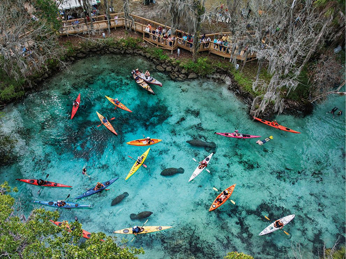Three Sisters Springs, Florida