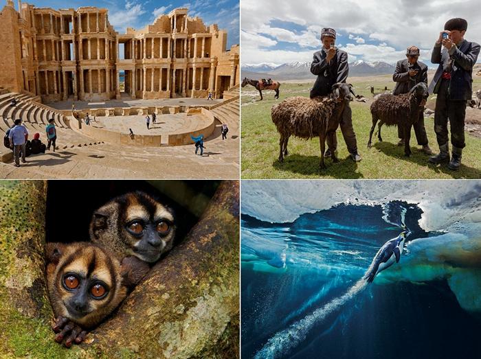 ТОР-фото от National Geographic за 04-10 марта