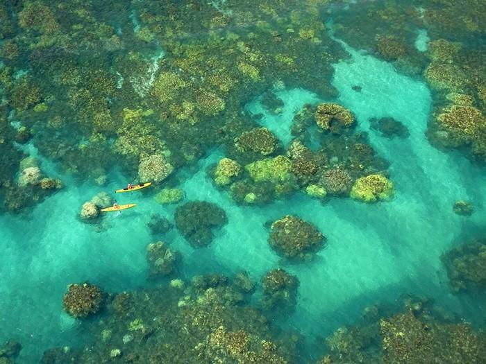 Kayakers, Maui