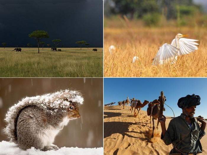 Лучшие фото за 06-12 февраля от National Geographic