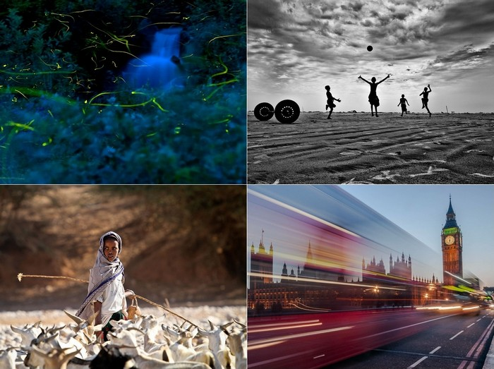 Лучшие фотографии за 06-12 августа от National Geographic