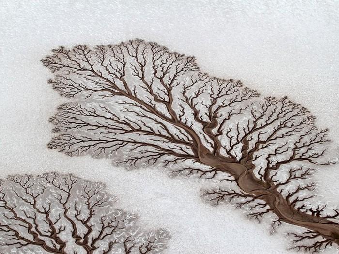 Desert Rivers, Mexico