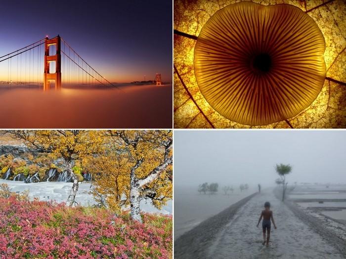 Лучшие фото за16-22 апреля от National Geographic