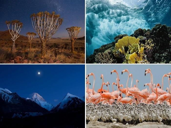 ТОР-фото за 19-25 марта от National Geographic