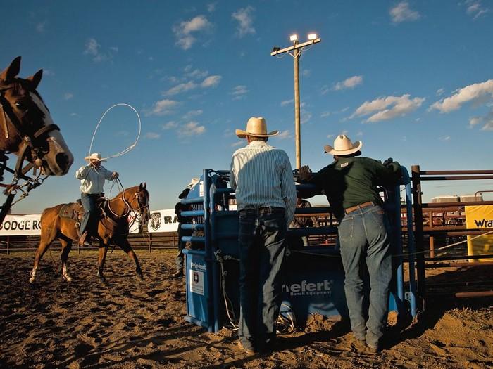 Rodeo, Montana