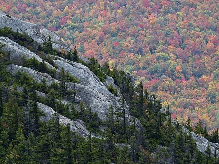 Catamount Mountain, Adirondacks