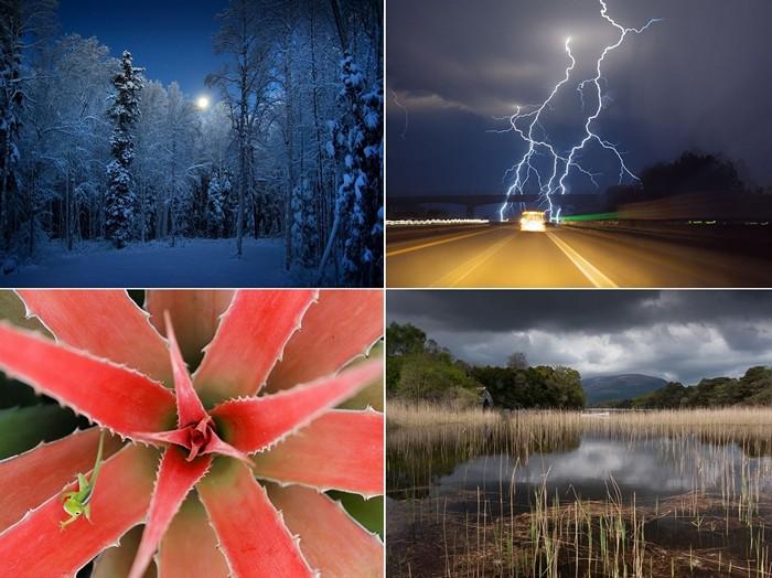 Лучшие фотографии за 24-30 сентября от National Geographic