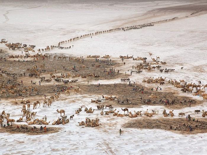 Caravans, Ethiopia