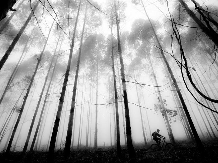 Mountain Biker, South Africa