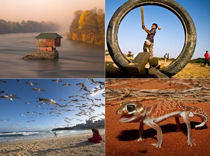 Лучшие фото за 30 июля-05 августа от National Geographic