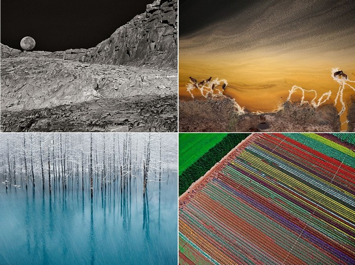 Лучшие фото от National Geographic за 07-13 ноября
