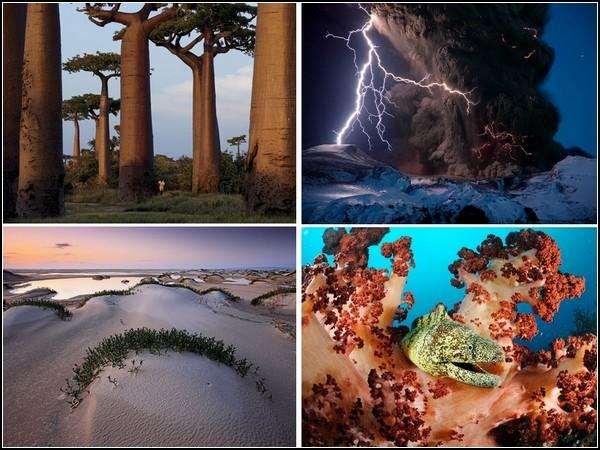 Лучшие фотографии уходящей недели от  National Geografic