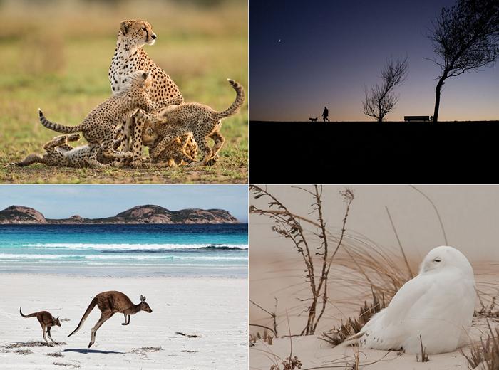 ТОР-фото за 21-27 января от National Geographic