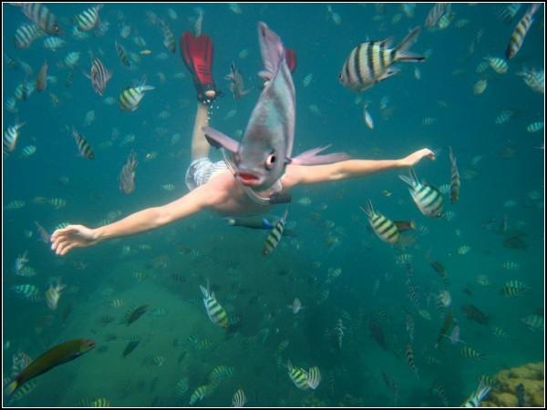 Snorkeler, Thailand
