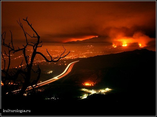 Los Angeles Wildfires