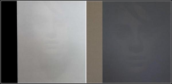 Портреты-иллюзии разных оттенков одного цвета