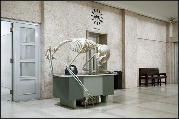 Живые скелеты. Фотоманипуляции из серии Vertebrata