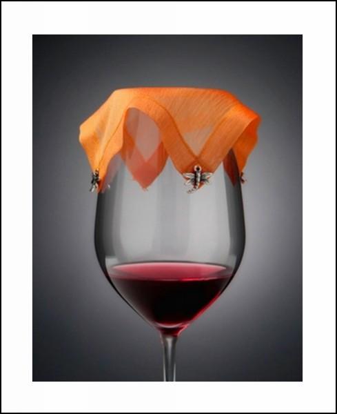 wineVEIL, изящный аксессуар для бокала с вином