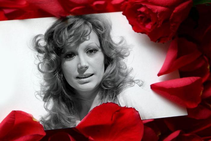 Лучшие иностранные каверы на мега-популярную советскую песню «Миллион роз»