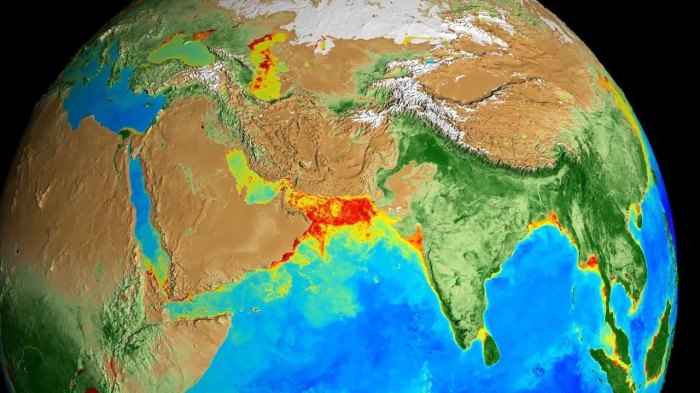 NASA показало, как пропадает жизнь вокеане