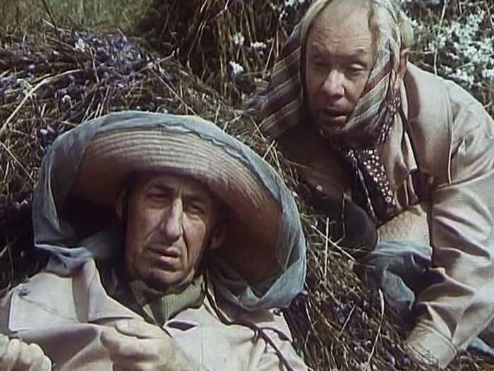 Кадр из фильма *Про Красную Шапочку*, 1977 | Фото: shkolazhizni.ru