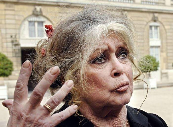 Актриса и общественный деятель Брижит Бардо | Фото: fresher.ru