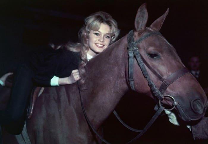 Любовь к животным стала самой большой любовью в ее жизни   Фото: rg.ru