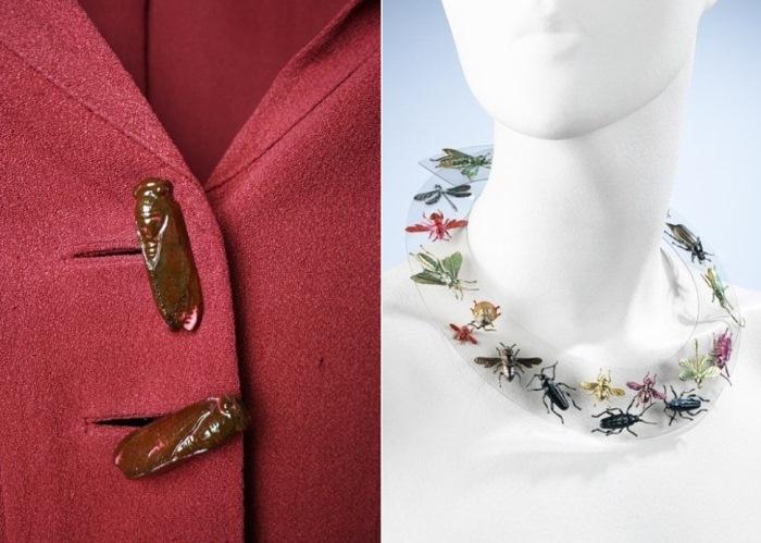 Пуговицы в виде жуков и ожерелье из прозрачного пластика с нарисованными насекомыми