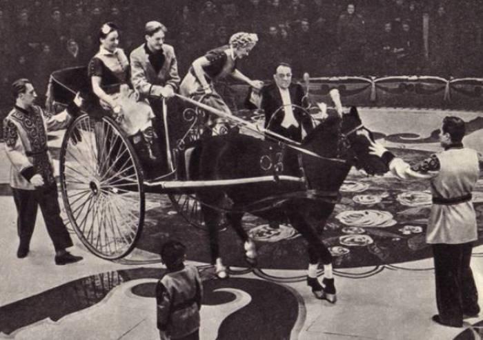 Кио на арене цирка | Фото: ruscircus.ru