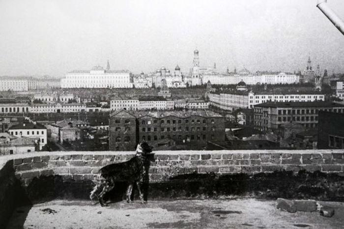 Вид с крыши Дома писателей, 1956 | Фото: weekend.rambler.ru