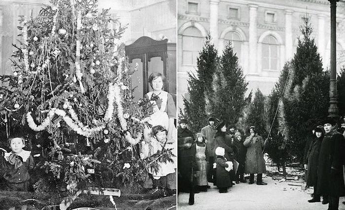 Елочный базар в Екатерининском саду, 1913