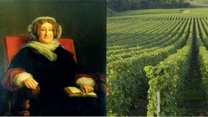 Николь Клико и ее виноградники