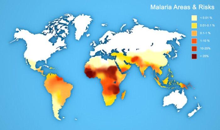 Карта-схема распространения малярии в мире