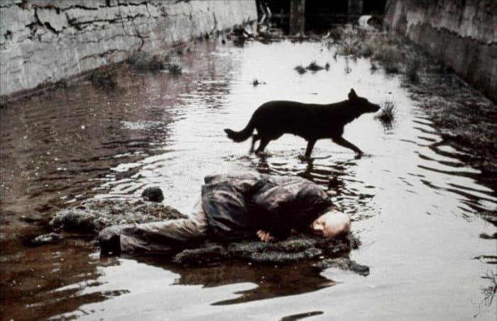 Кадр из фильма *Сталкер*, 1979   Фото: domkino.tv