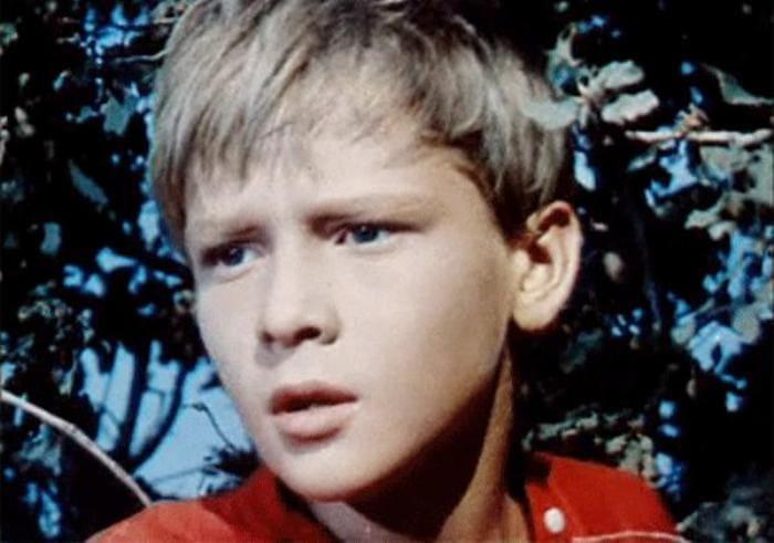 Сережа Остапенко в *Сказке о Мальчише-Кибальчише*, 1964 | Фото: kino-teatr.ru