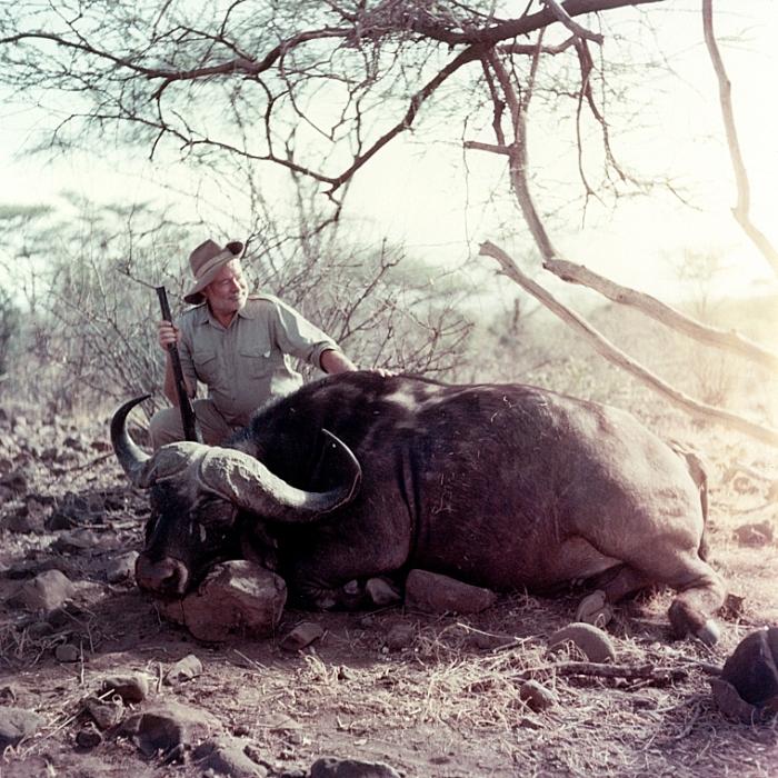 Хемингуэй на охоте в Африке, 1953-1954